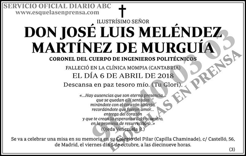 José Luis Meléndez Martínez de Murguía